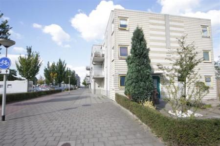 Bergen op Zoom Bergseplaat