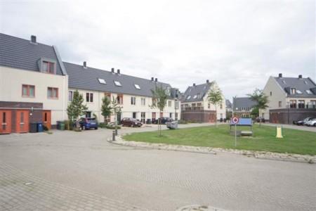 Houten Schonauwen