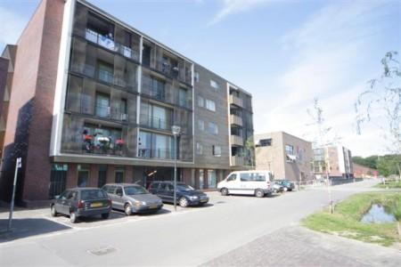 Eindhoven Grasrijk