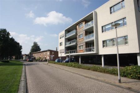 Waalwijk Rode en Witte wijk