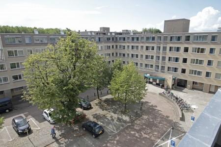 Utrecht Wittevrouwen